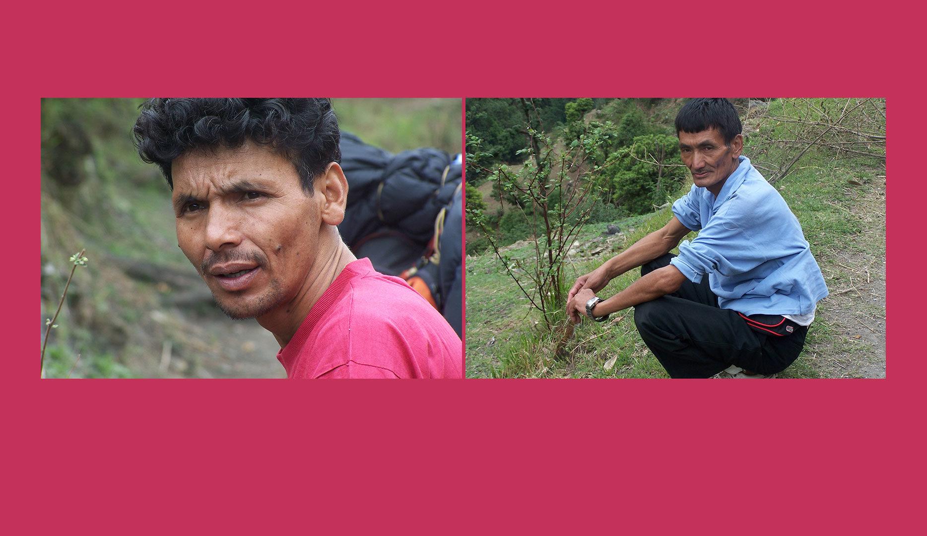 Guide et Sherpa en Inde